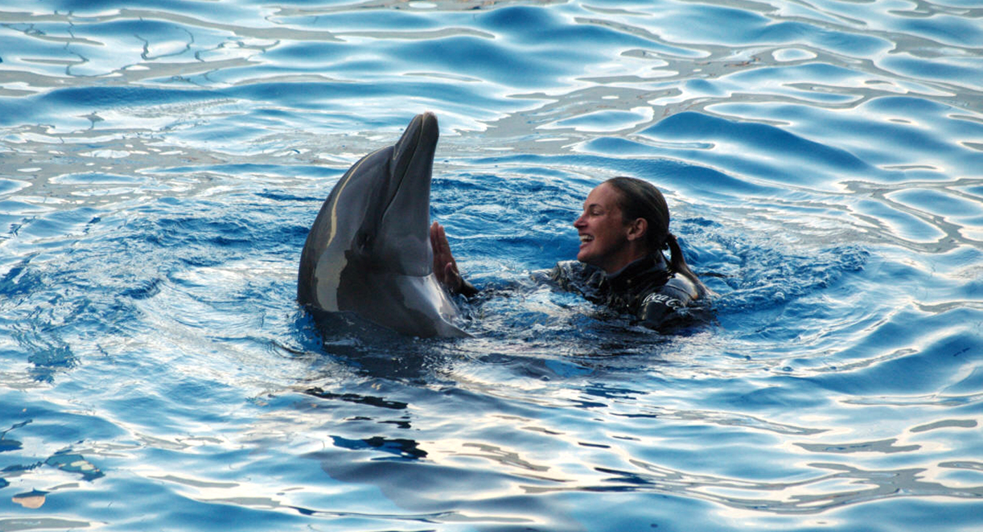 Girl with dolphin cum join. was