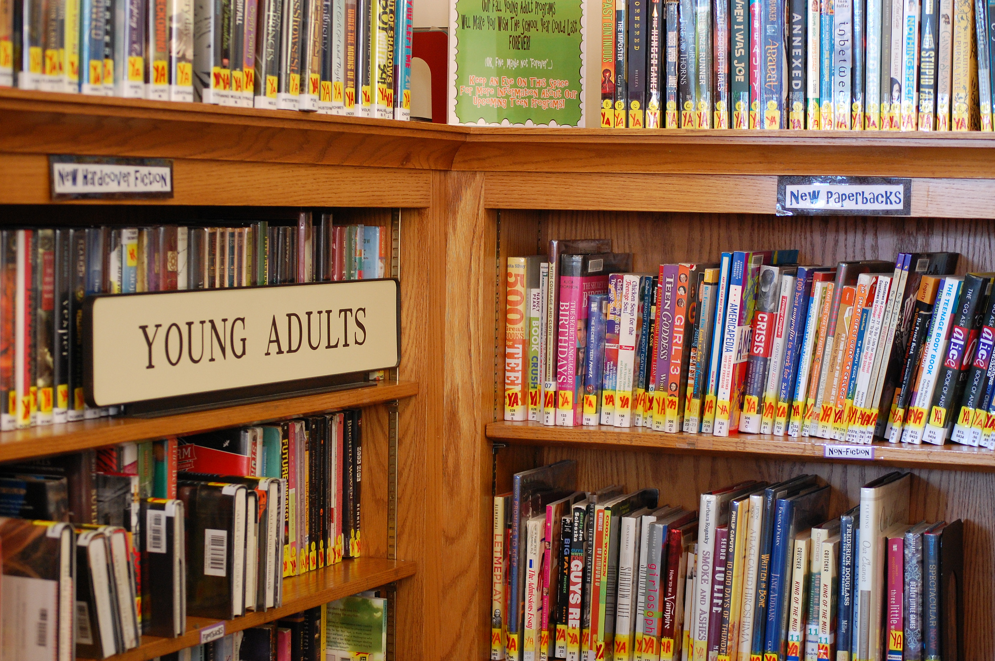 Adult fiction about librarians picture 111