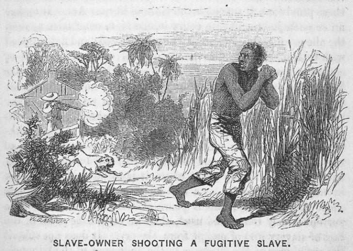 Image via New York Public Library / Wikimedia Commons.