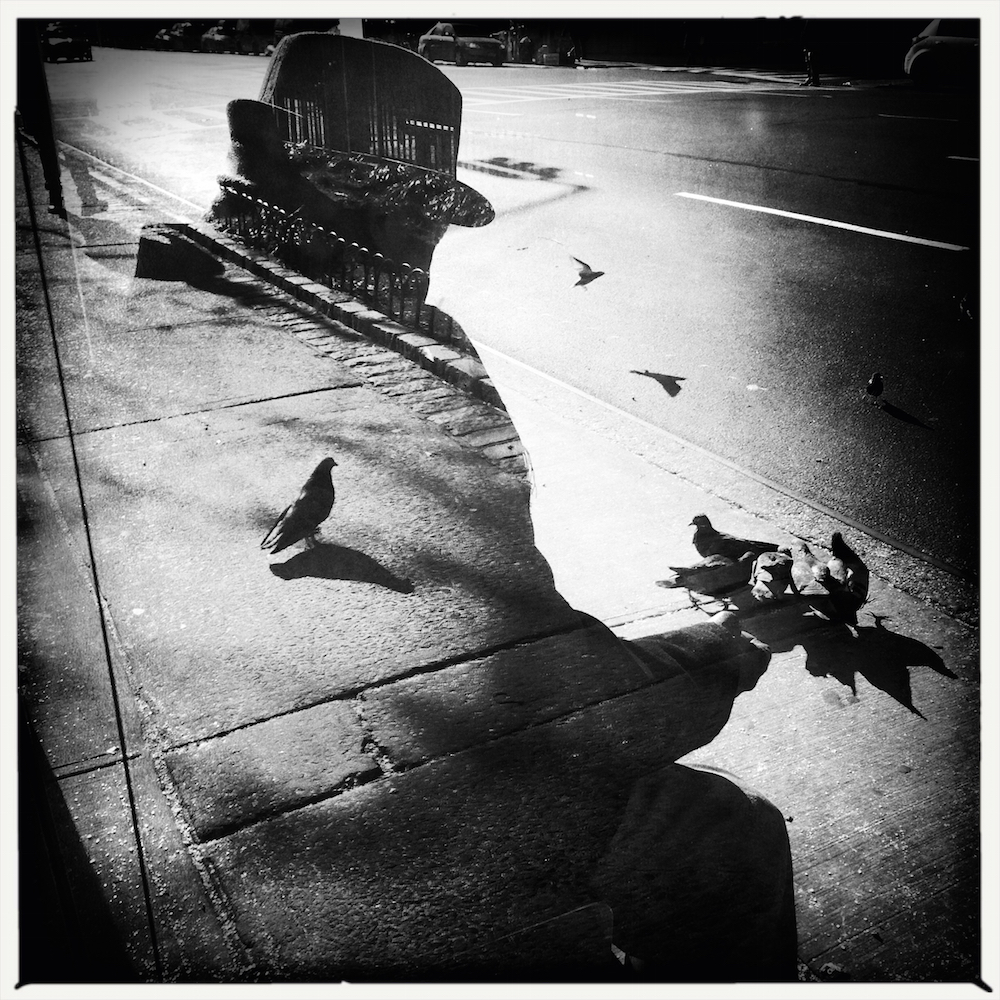 A lone man and pigeons. New York.