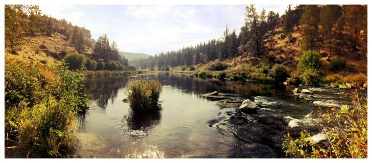 Photo by  Bureau of Land Management Oregon (CC BY-SA 2.0)