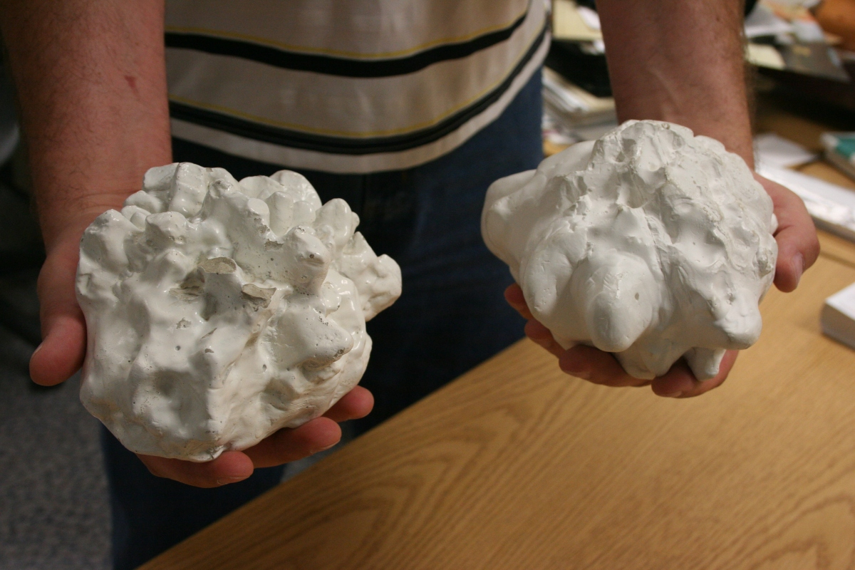 Replicas of two of the largest known hailstones ever to fall from the sky in the United States