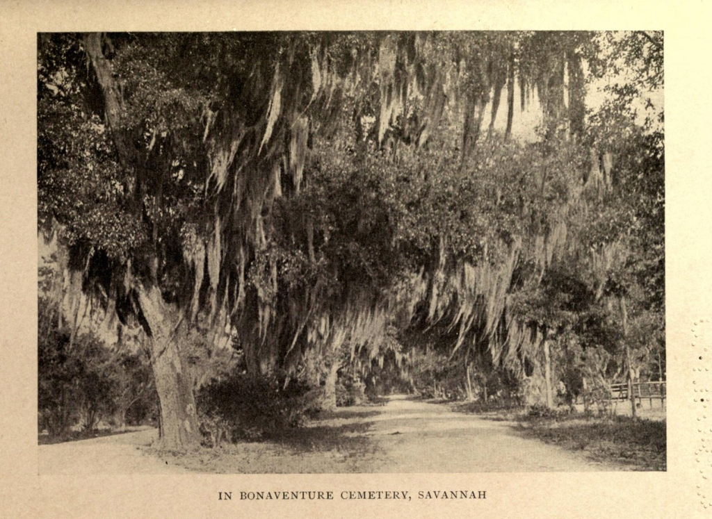 One of the site's of Muir's walk, the Bonaventure Cemetery Savannah. (Photo: Internet Archive/Public Domain)