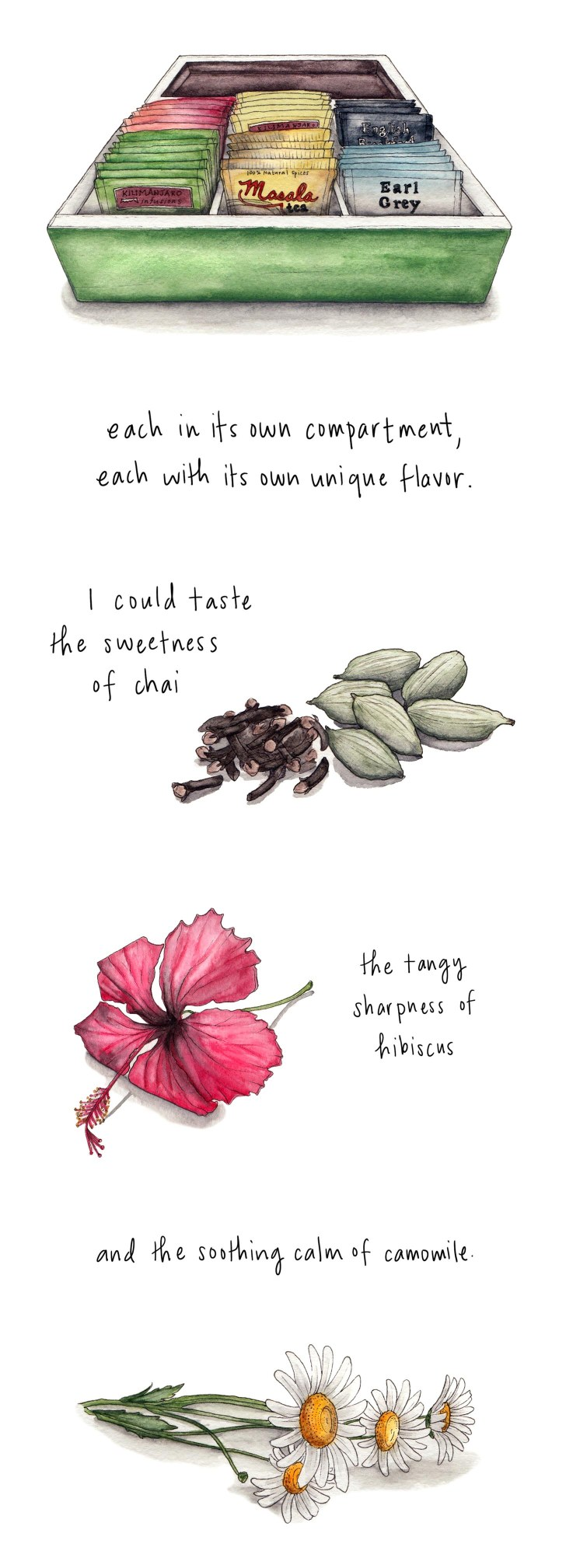 each in its own compartment, each with its own unique flavor. I could taste the sweetness of chai the tangy sharpness of hibiscus and the soothing calm of chamomile.