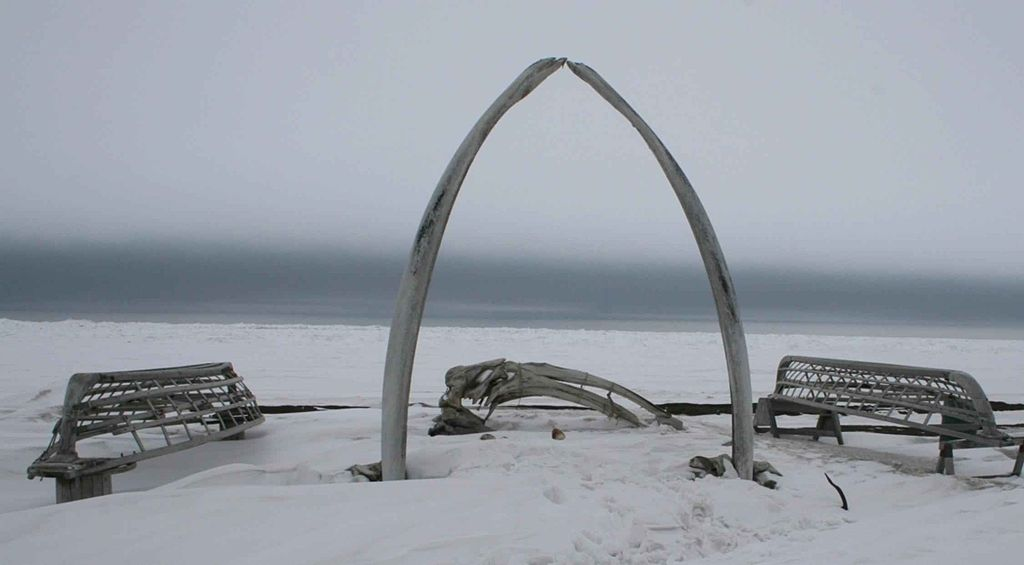 Whale bones and boat frames, Barrow, Alaska