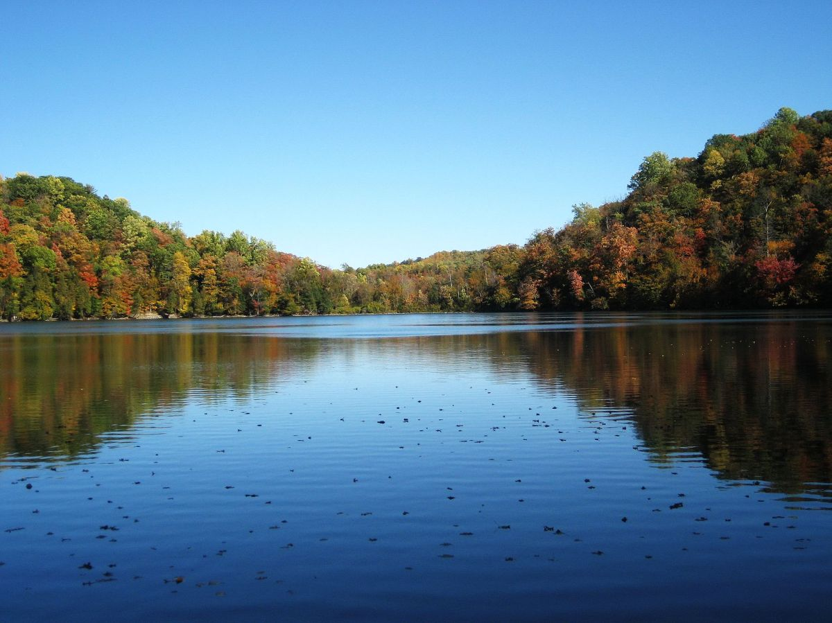 a large lake is surrounded by trees with green, yellow, and orange leaves. The sky is blue, with no clouds.