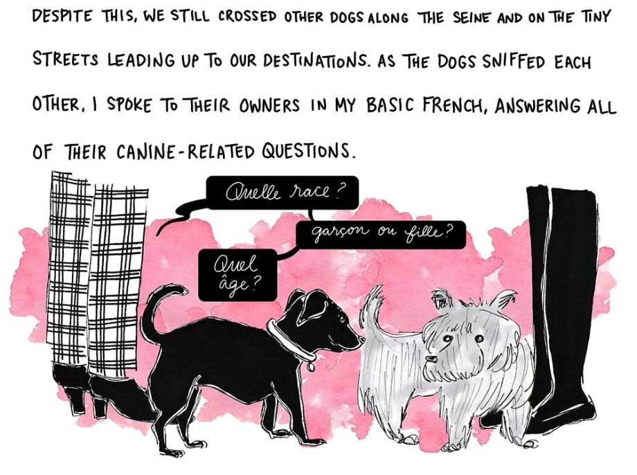 Despite this, we still crossed other dogs along the Seine and on the tiny streets leading up to our destinations. As the dogs sniffed each other, I engaged with their owners in basic French conversations that consisted of simple questions.
