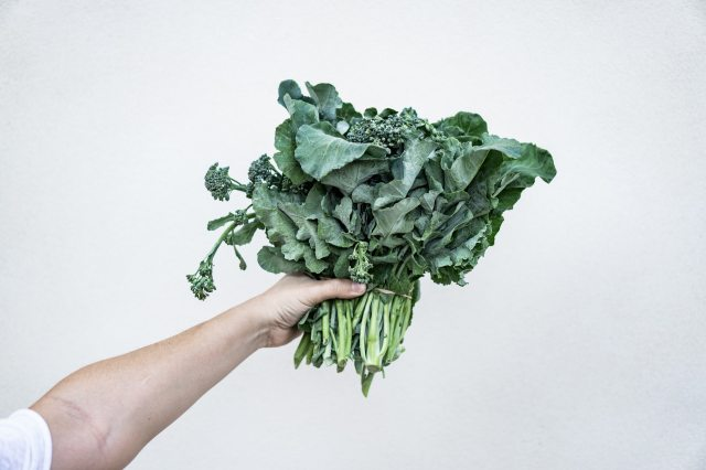 Eating What Feels Right: On Going Vegetarian