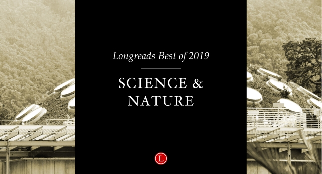 Longreads Best of 2019: Science and Nature