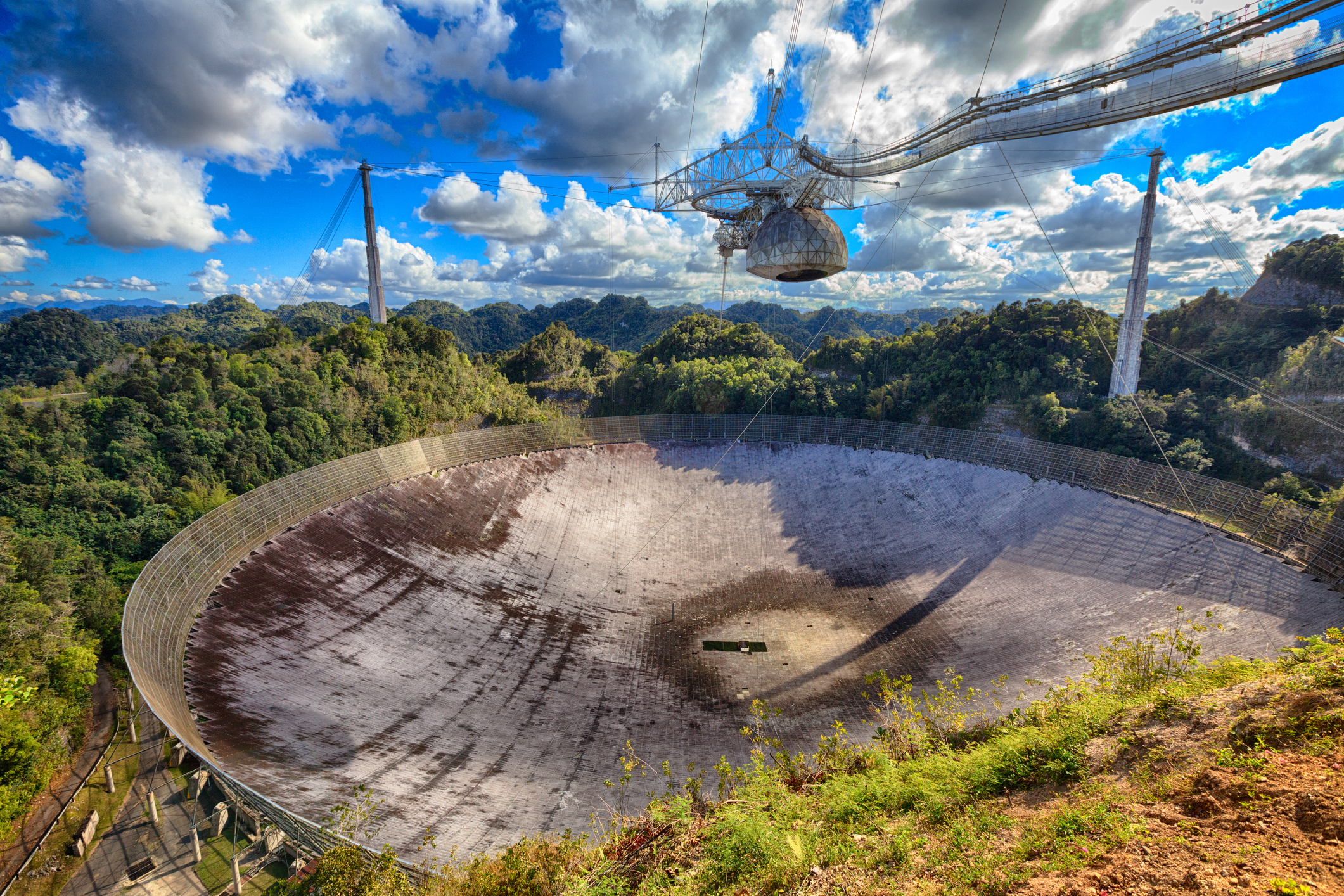 A Fond Farewell to a Friend: the Arecibo Telescope