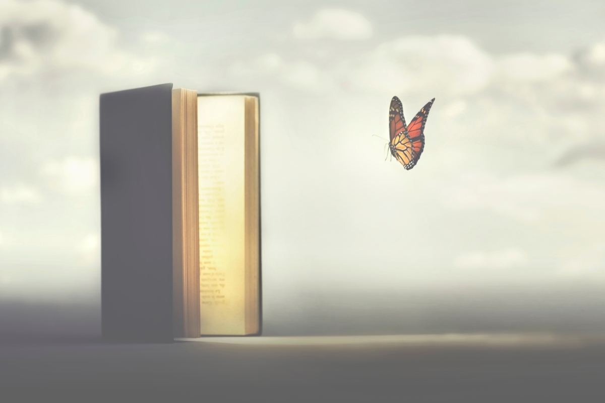 surreal moment of a butterfly entering the pages of a book
